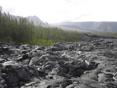 Secousses sismiques, tremblement de terre - Le Volcan?