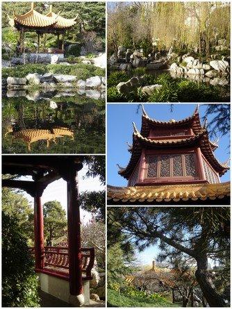 Sydney jardin chinois for Jardin chinois