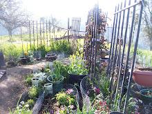 April Garden