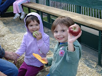 Apple & Pumpkin Picking:Hayride