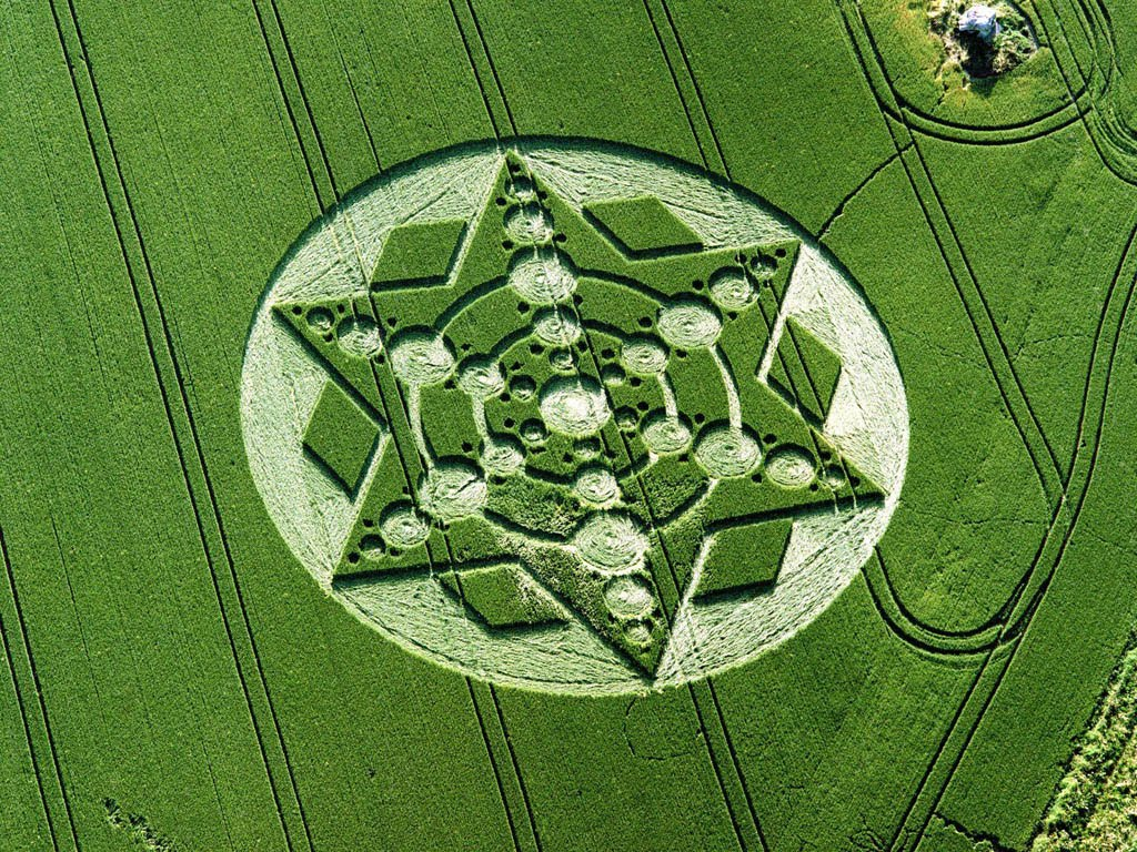 Alien Face Crop Circle http://endtimesinhistory.blogspot.com/2010/05/crop-circles-illuminati-alien-deception.html