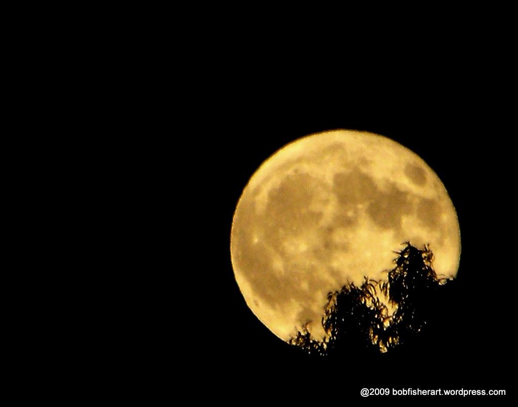 Luna llena 2015 en junio search results calendar 2015 for En que fase de luna estamos hoy
