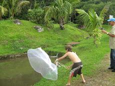 Fishin' for Tilapia