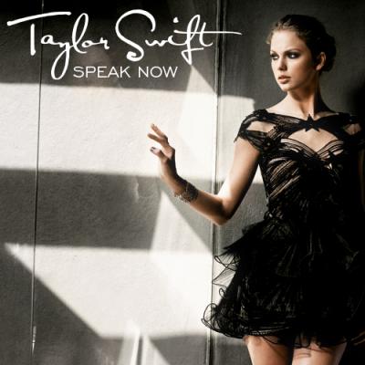 Permanent Marker Taylor Swift on Taylor Swift     Permanent Marker Lyrics