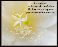 Gracias Arantza...