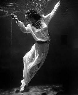 La vida bajo el agua