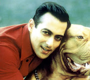 Salman Khan New Wallpapers 2011