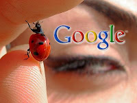 google detectando malware y otros bichitos en la red