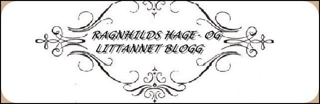 Ragnhilds hage- og littannet blogg