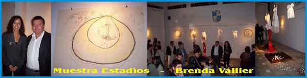 Muestra  Estadìos - Artista Brenda Vallier  08/05/09