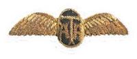 ATA pilot wings