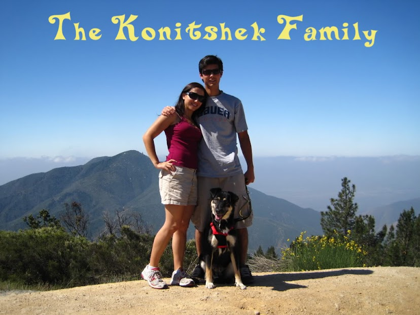 The Konitshek Family
