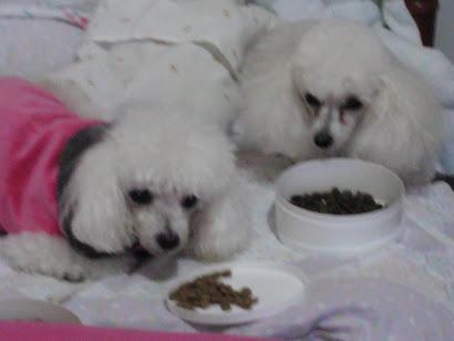 Minnye & Yasmin