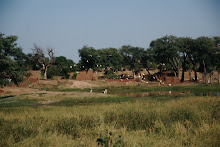 Fertile Wadi in West Darfur