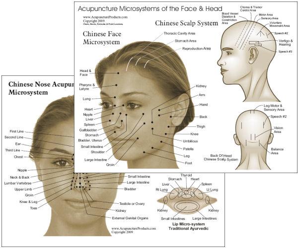 Koa Shiatsu  Reflexologia Facial