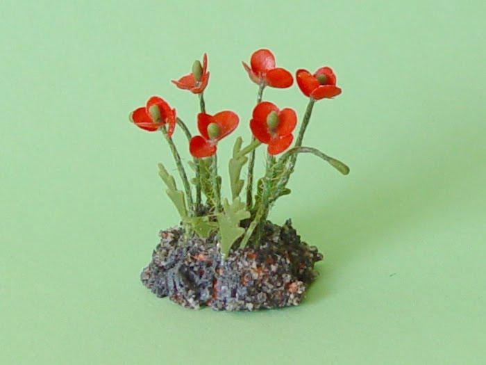 Plantas de exterior y jardines amapolas - Plantas para arriates ...