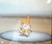 Pokemon Black and White Victini.