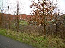 Packers Field Allotments