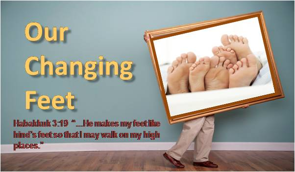Our Changing Feet