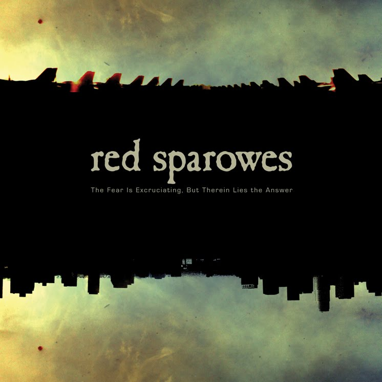 red sparowes artwork