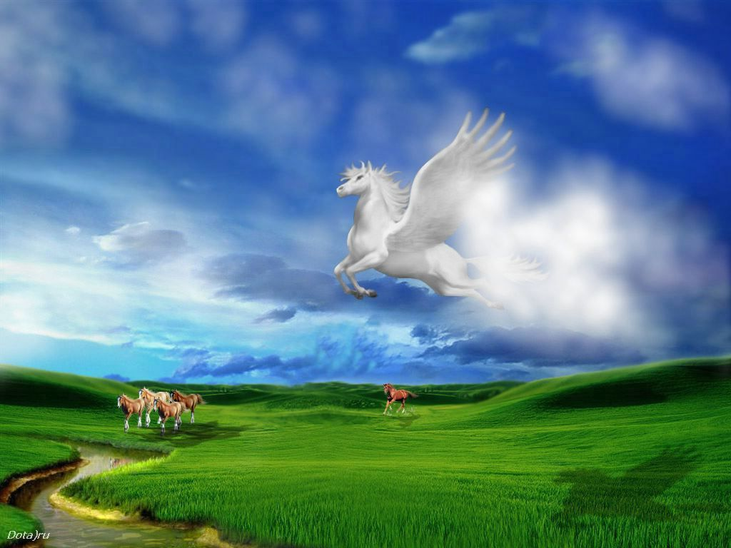 Poze 3D digitale cu animale. Wallpaper 1024 x 768 in 3D