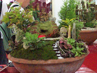 Dish garden pictures redgage dish gardening is an arrangement of several different plants in a single dish or container plus your creative ideas of putting things like workwithnaturefo