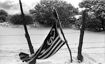 """""""Peace Flag"""""""