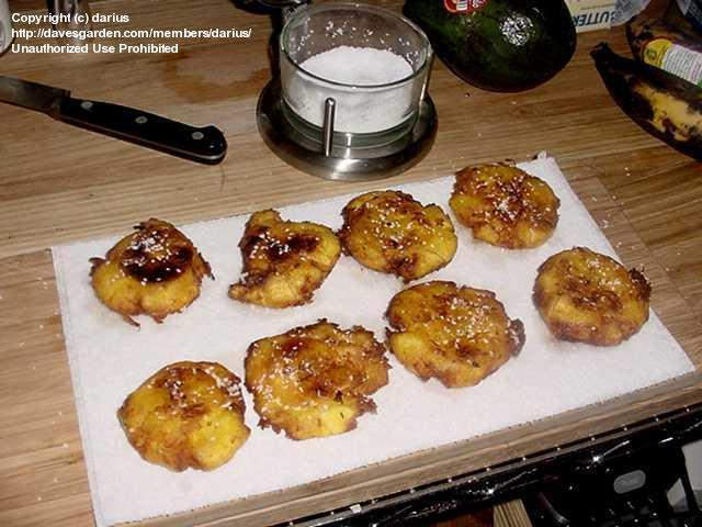 how to make platanos maduros in the oven