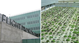 A rooftop, drought-resistant garden is among the