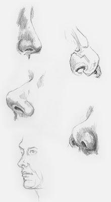 drawing the nose diane wright sketches tutorials