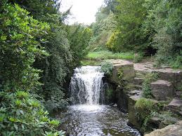Dene Waterfall