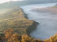 paduan tanah kokoh dan lembut kabut di pagi hari