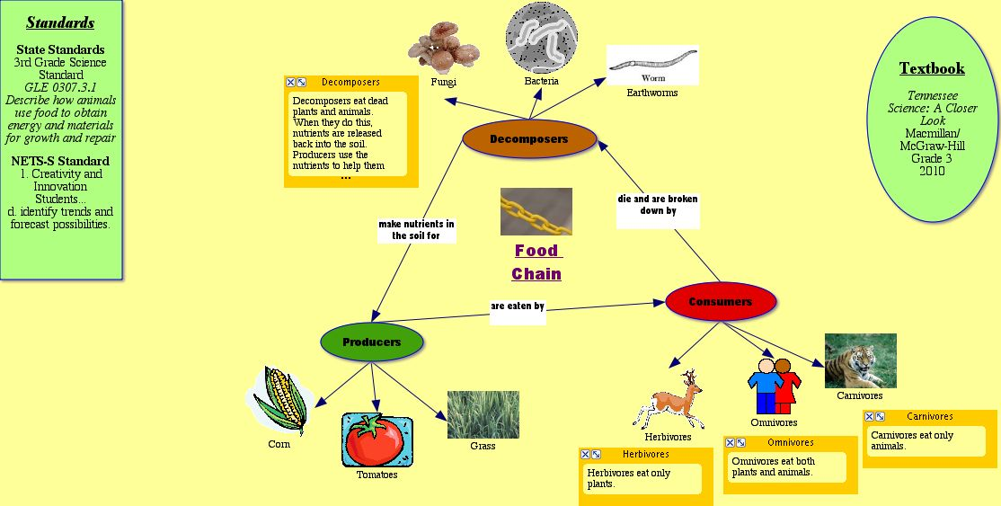 difference between food chain and food. difference between food chain