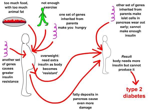 ... nacional da diabetes 2010 sobre a incidencia da diabetes no nosso pais