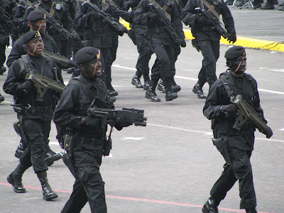 GAFE fuerzas especiales de Mexico