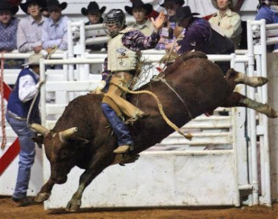 bull rider summary Comprehensive summary and analysis of chapter 3 of hoot by carl  he wants  to someday be a bull rider like the cowboy in the picture and.