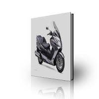 Suzuki Burgman650 Service Manual