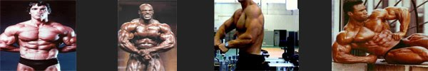 BODY BUILDING ACTION discovery of natural body buillding