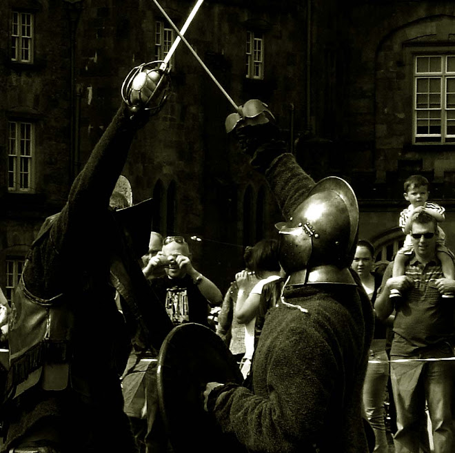 Kilkenny Castle 2008