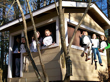 My Students in the Treehouse