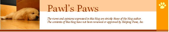 Dempsey's Helping Paws Blog