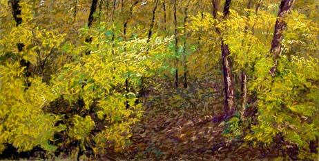 Madison Arboretum Gold #2