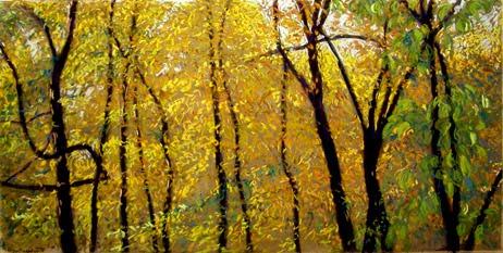 Madison Arboretum Gold #1