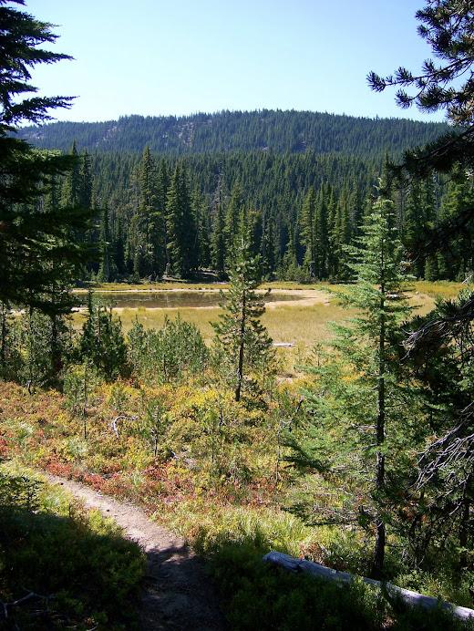Vivian Lake