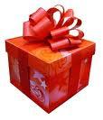 regalo guida