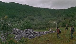 screenshot of the tube dump