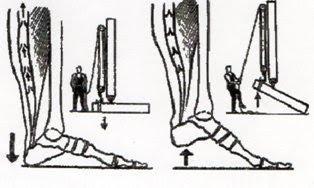 Операция на вены на ногах реабилитация