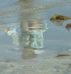 Reflexos de uma clara alma
