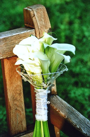 Sophonies blog aristotle and jacqueline kennedy smile on their gorgeous white calla lilies wedding bouquet with green foliage junglespirit Choice Image