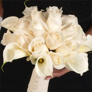 The White Calla Lily Is Symbolic Of Purity And Represents Weddings Both For Its Color Trumpet Like Shape Which Similar To A Womans